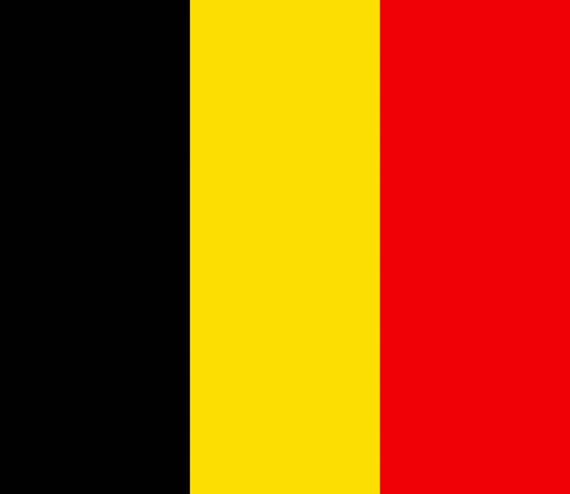 Ambassade de Belgique (Délégation Flamande)