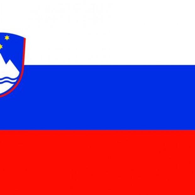 Ambassade de Slovénie