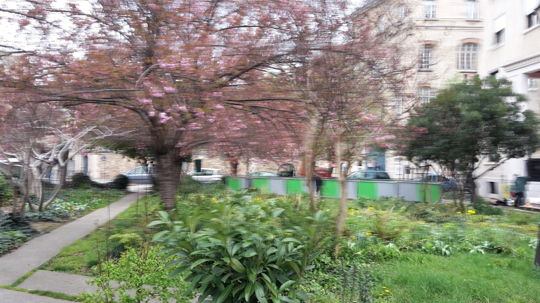 Square Marie Trintignant